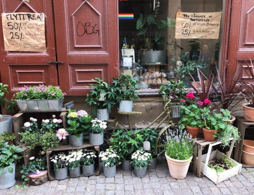 Stockholm Blumenladen
