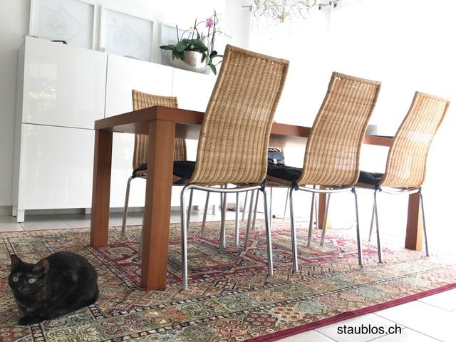 Neuer Teppich staublos.ch