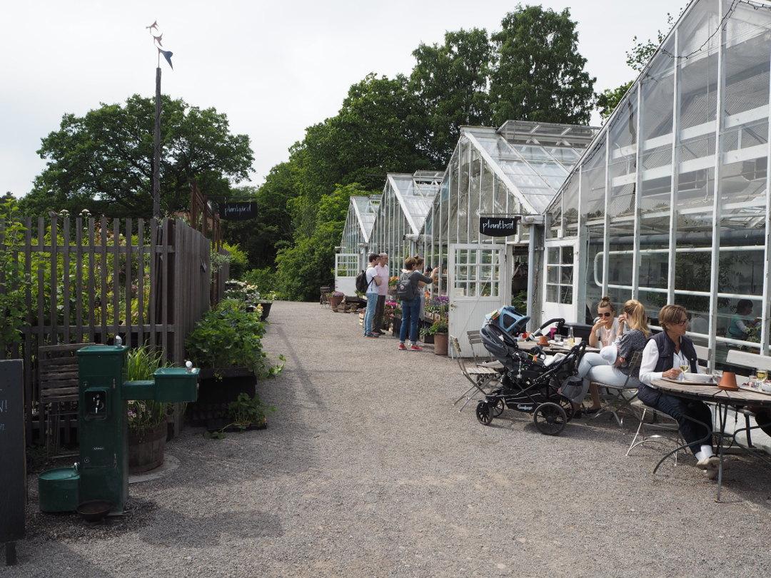 Rosendal Trädgard