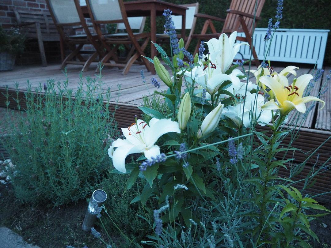 Orndung im Garten