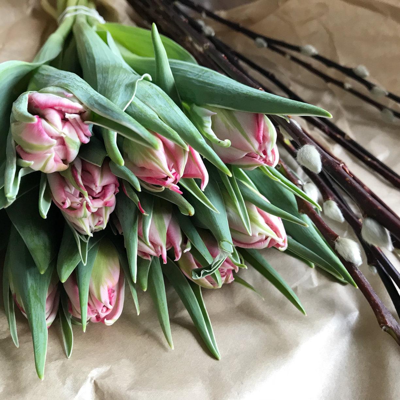 Frl Ordnung frl ordnung wochenglück tulpenliebe fräulein ordnung