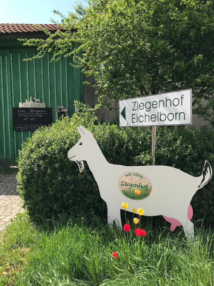Ziegenhof Eichelborn