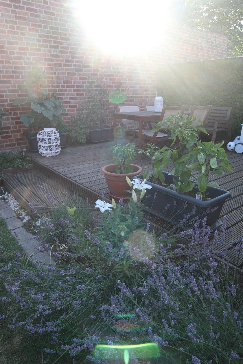 OrdnungsTag im Garten