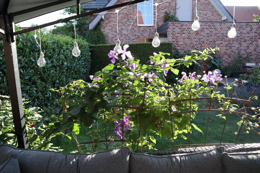 Ordnung im Garten