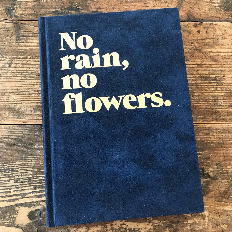 no rain. no flowers.